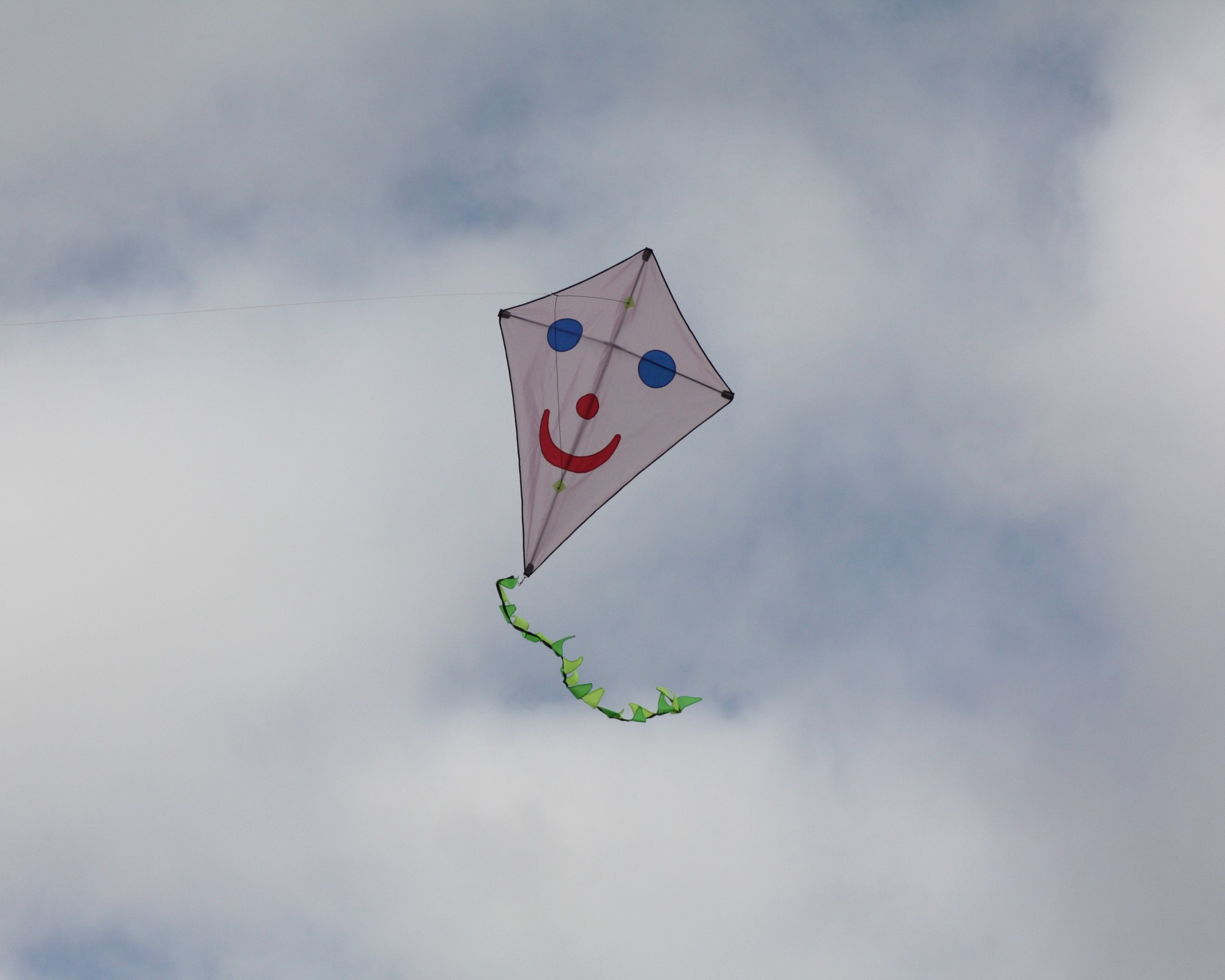 Kite Pictures 016